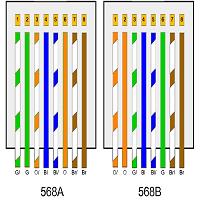 Orden de cables de internet para terminal macho y hembra